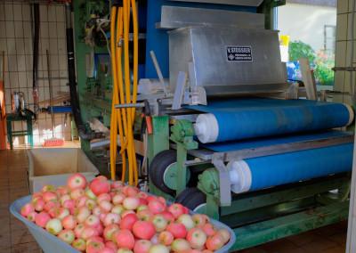 Apfelpresse mit Apfelen